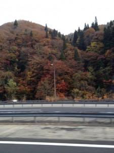 青森の紅葉風景